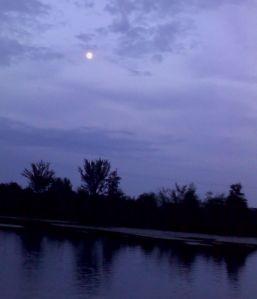 moonshadow evening